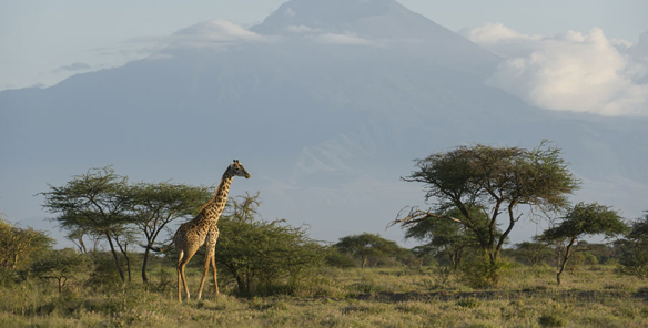 Tanzania Village Tour, Longido Ilkiding'a & Mulala 4 days – Tanuga ...