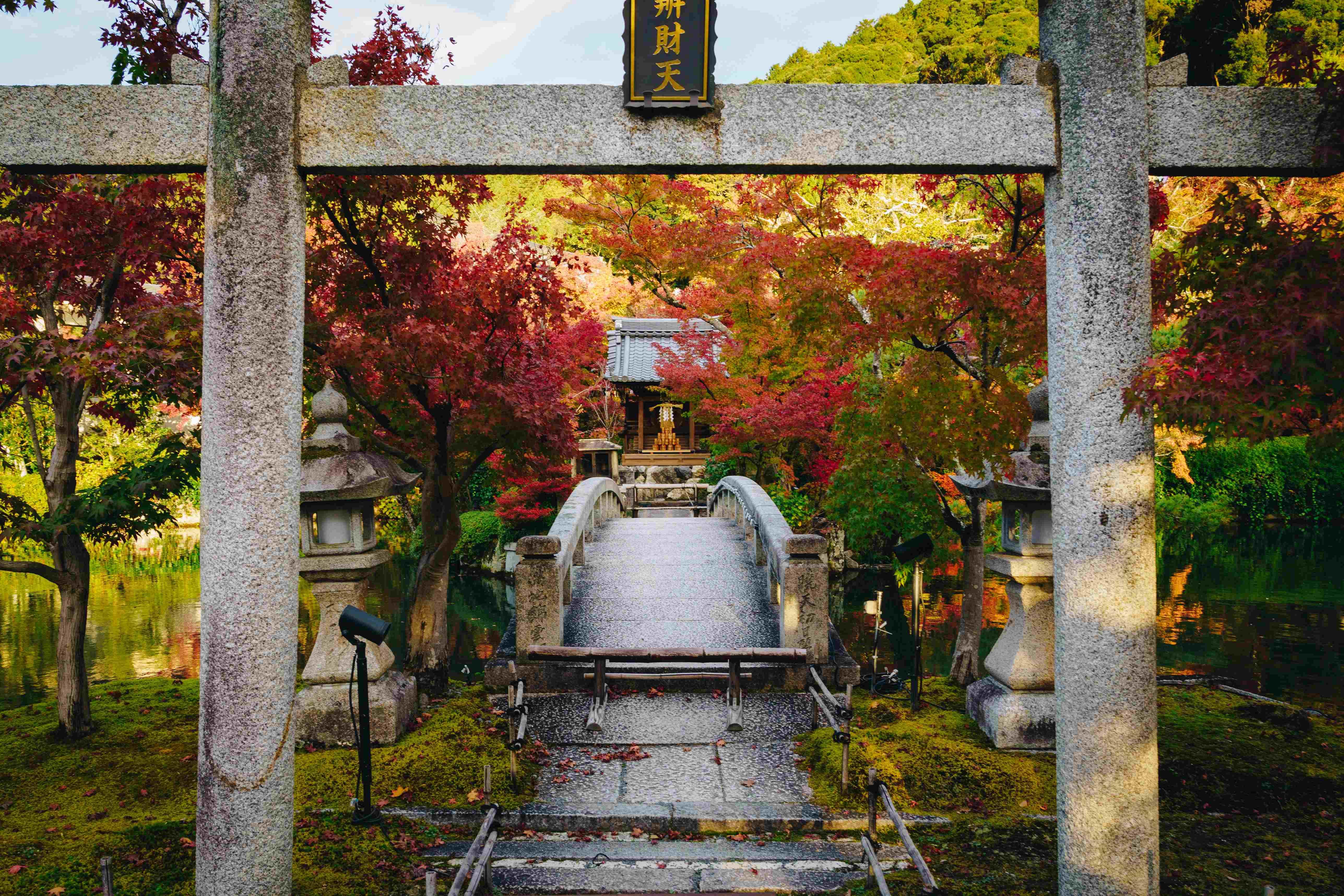 Best Autumn Destinations In Japan - Kyoto