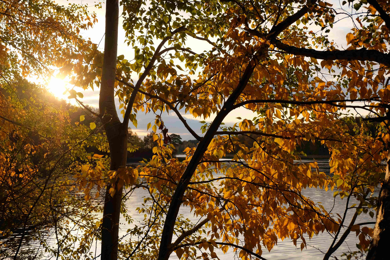 Best Autumn Travel Destinations